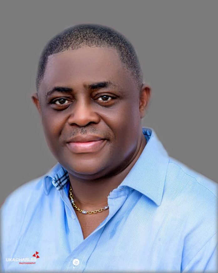 Fani Kayode on the arrest of Omoyele Sowore